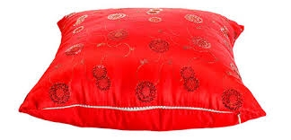 Pillow in Punjab